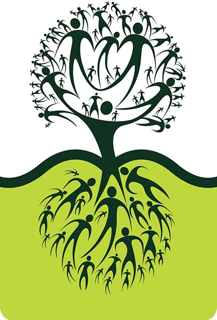 Посади дерево 1