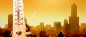 Університетський вчений про цьогорічну аномальну спеку в Бердянську